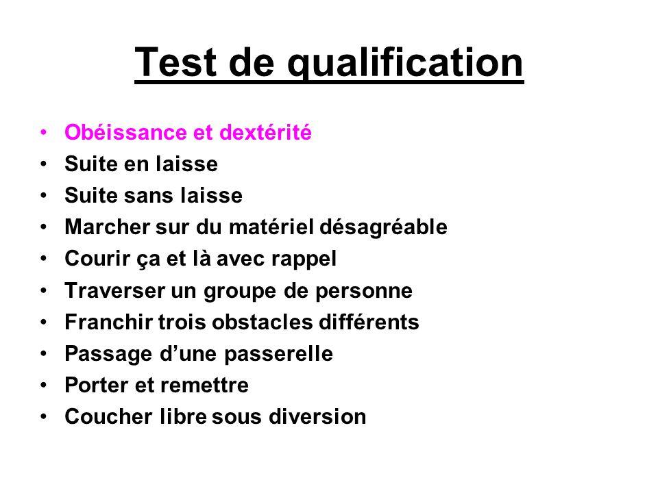 Test de qualification Obéissance et dextérité Suite en laisse
