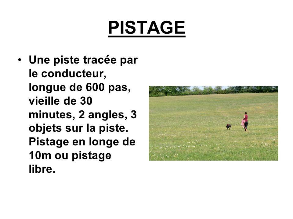 PISTAGE