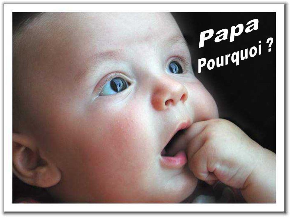 Papa Pourquoi
