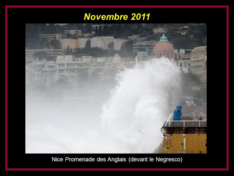 Nice Promenade des Anglais (devant le Negresco)