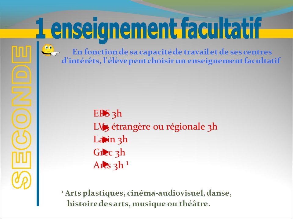 1 enseignement facultatif