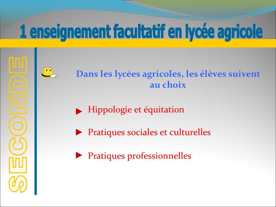 1 enseignement facultatif en lycée agricole