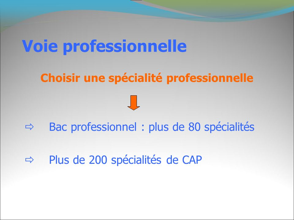 Voie professionnelle  Bac professionnel : plus de 80 spécialités