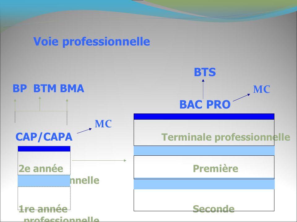 Voie professionnelle BTS BAC PRO BP BTM BMA MC
