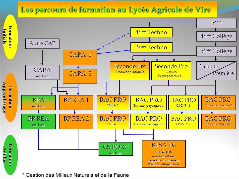 Les parcours de formation au Lycée Agricole de Vire