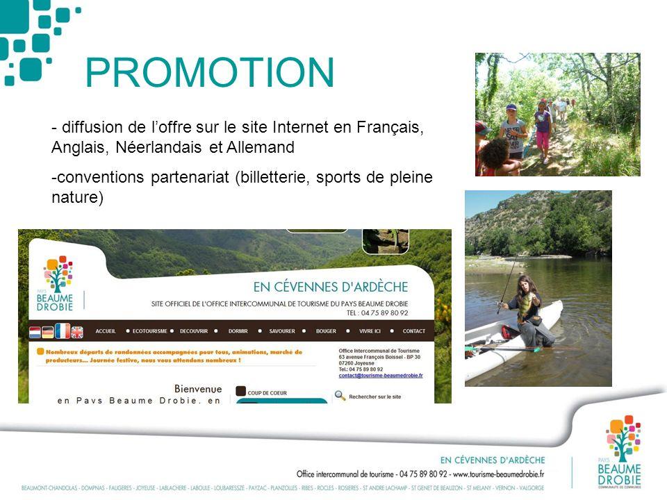 PROMOTION - diffusion de l'offre sur le site Internet en Français, Anglais, Néerlandais et Allemand.