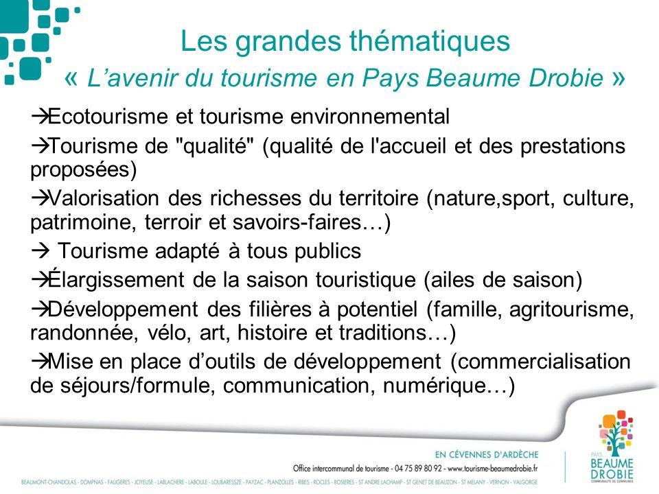 Les grandes thématiques « L'avenir du tourisme en Pays Beaume Drobie »