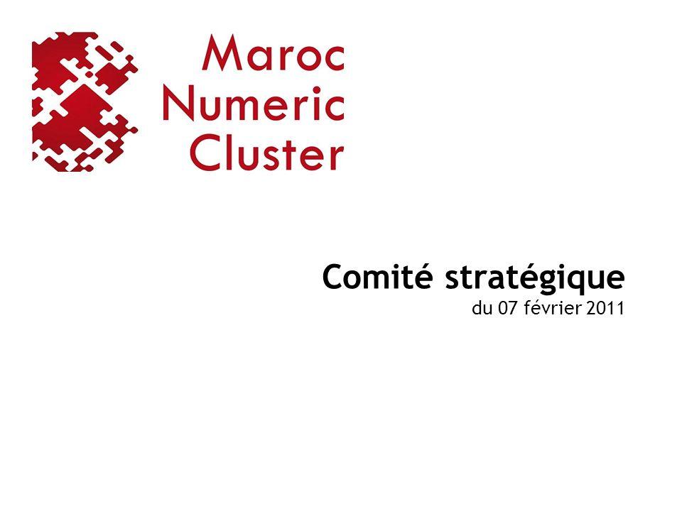 Comité stratégique du 07 février 2011
