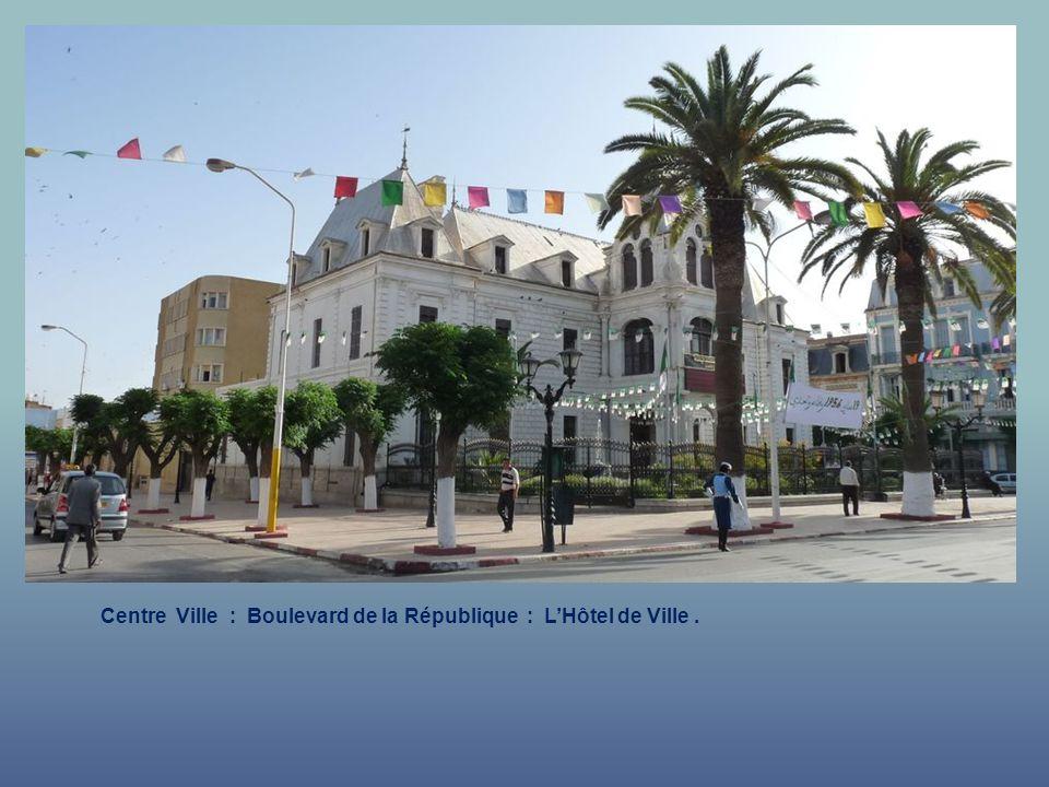 Centre Ville : Boulevard de la République : L'Hôtel de Ville .