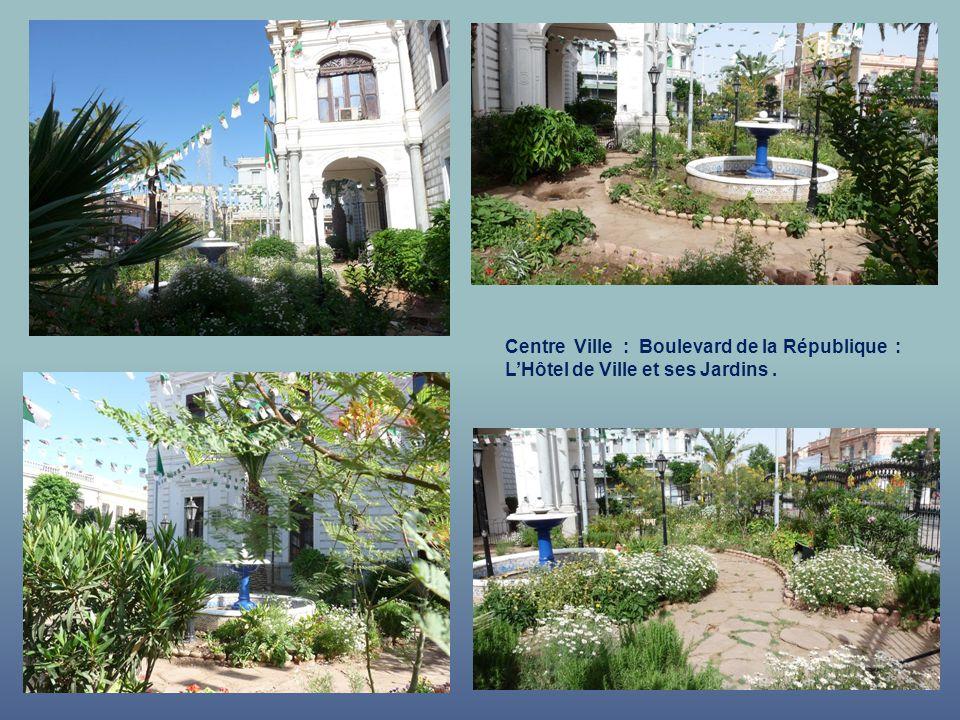 Centre Ville : Boulevard de la République : L'Hôtel de Ville et ses Jardins .