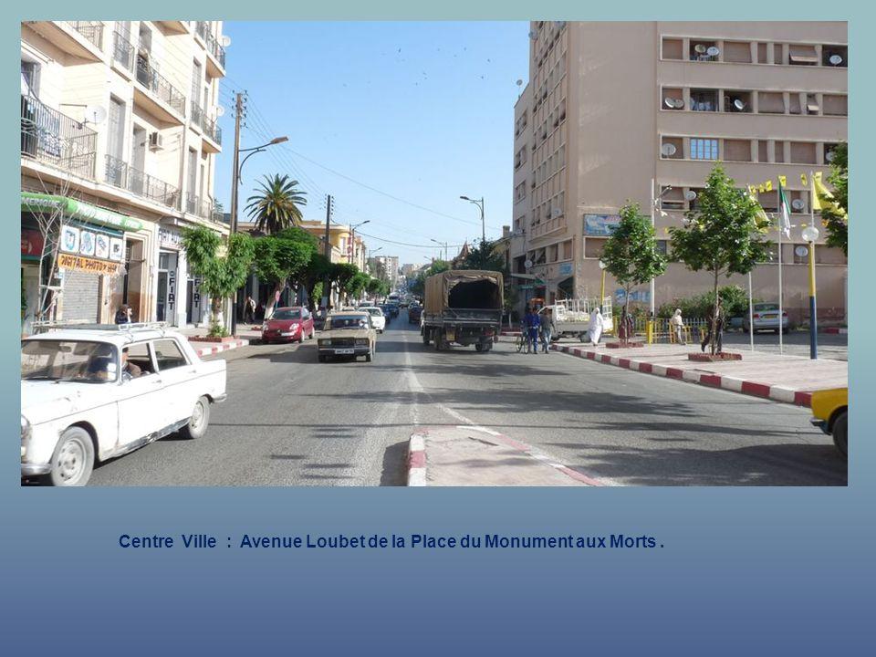 Centre Ville : Avenue Loubet de la Place du Monument aux Morts .
