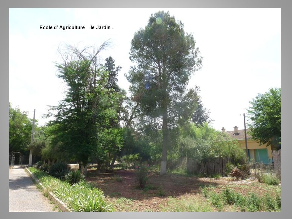 Ecole d' Agriculture – le Jardin .