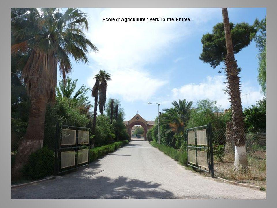 Ecole d' Agriculture : vers l'autre Entrée .
