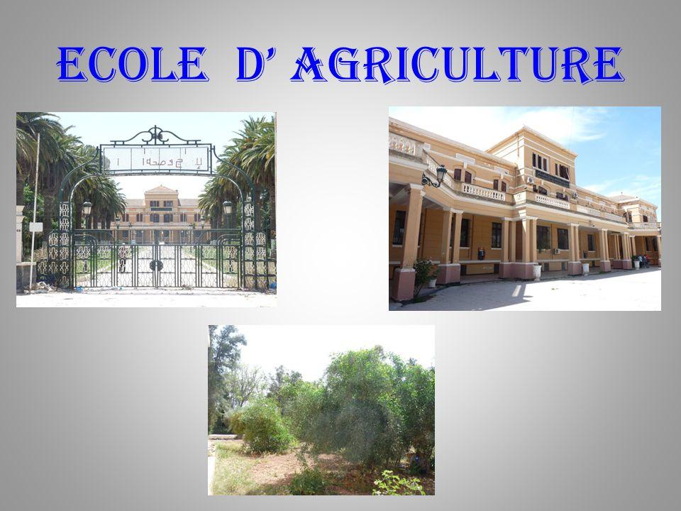 Ecole d' agriculture