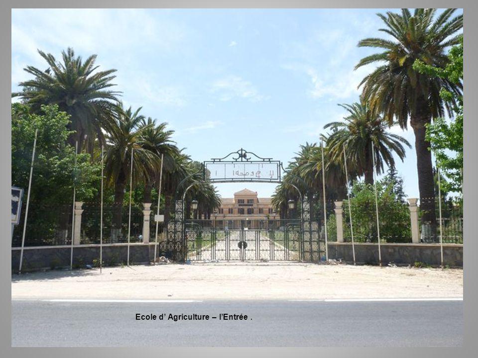 Ecole d' Agriculture – l'Entrée .
