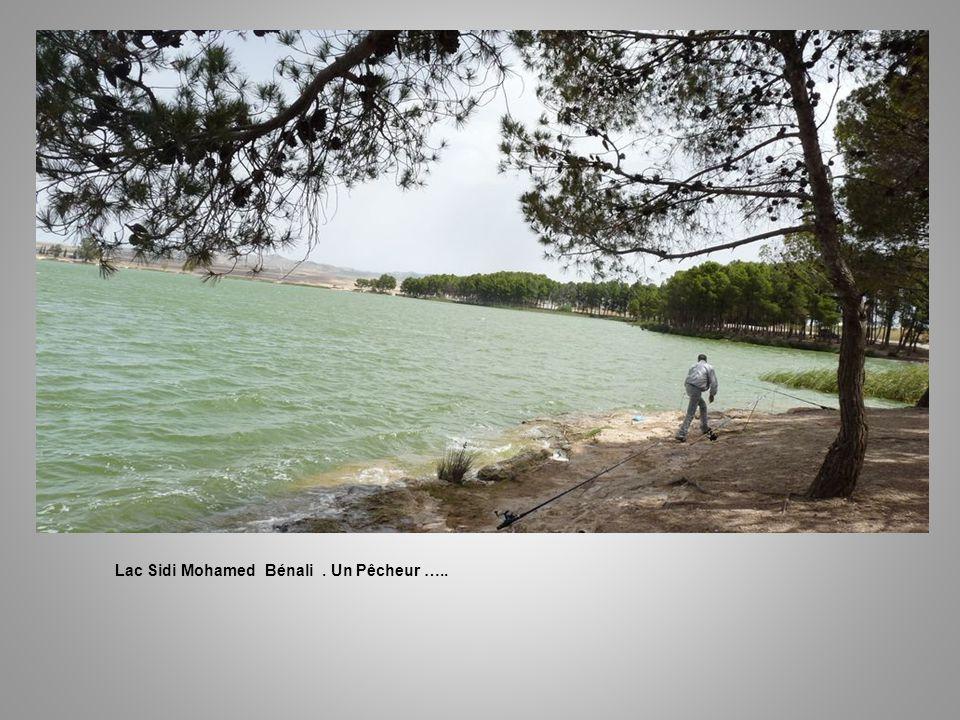 Lac Sidi Mohamed Bénali . Un Pêcheur …..
