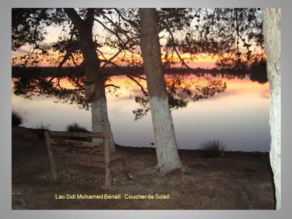 Lac Sidi Mohamed Bénali . Coucher de Soleil .
