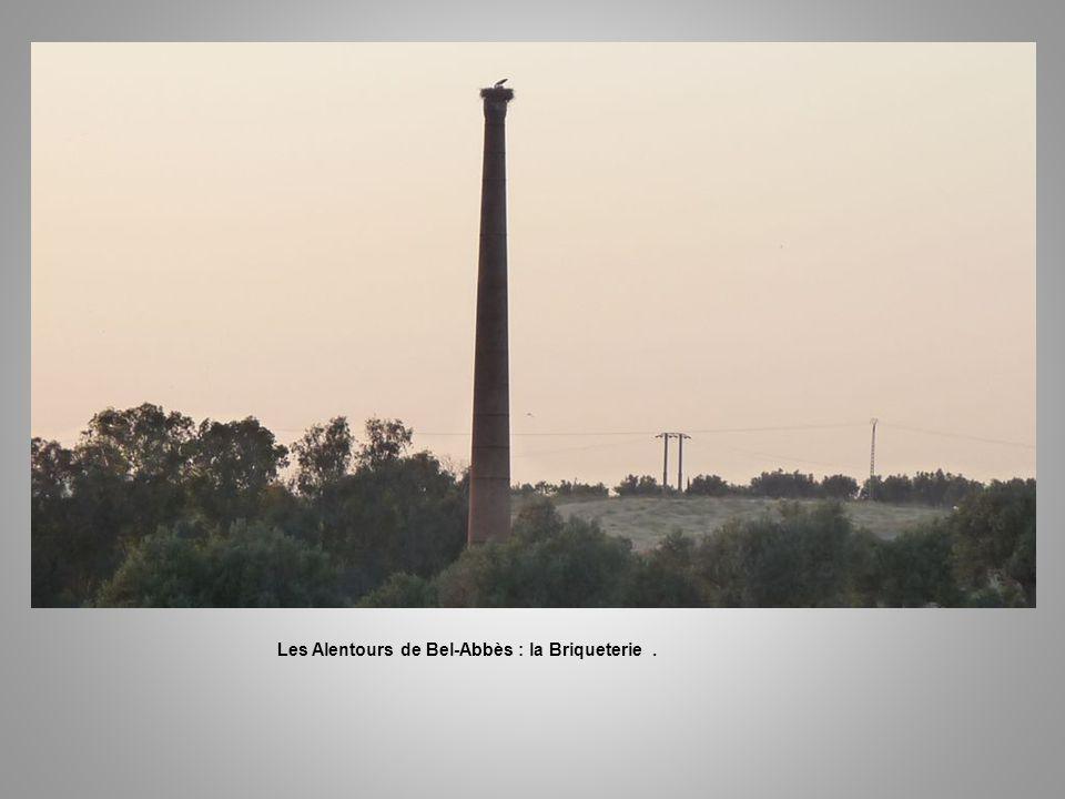 Les Alentours de Bel-Abbès : la Briqueterie .