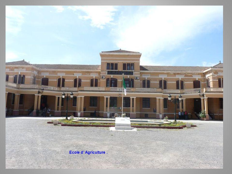 Ecole d' Agriculture .