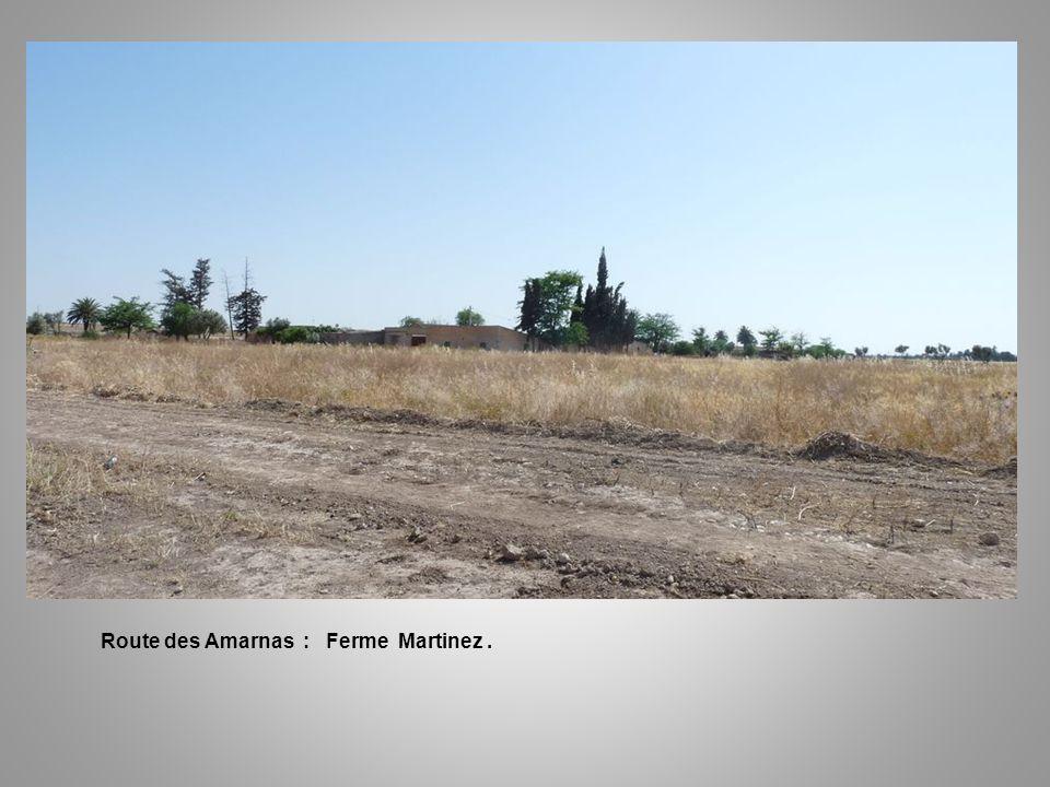 Route des Amarnas : Ferme Martinez .