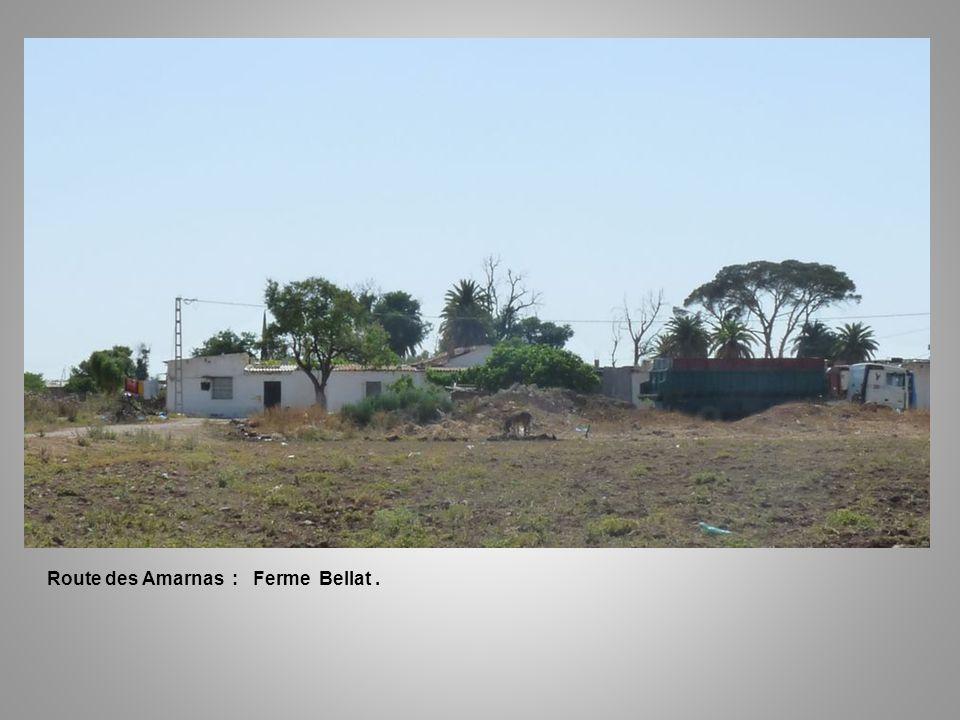 Route des Amarnas : Ferme Bellat .