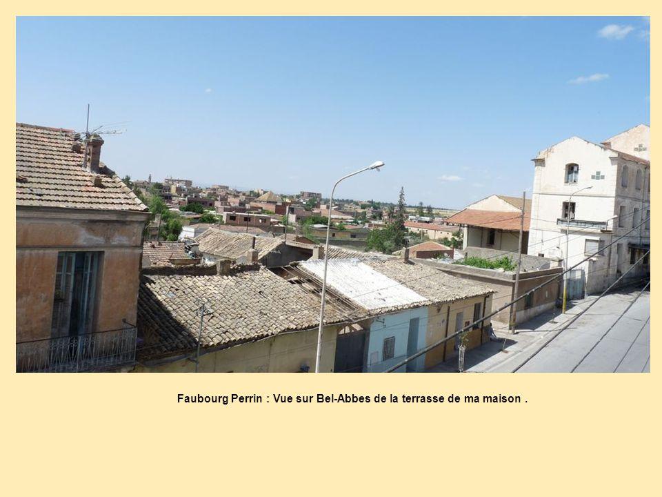 Faubourg Perrin : Vue sur Bel-Abbes de la terrasse de ma maison .