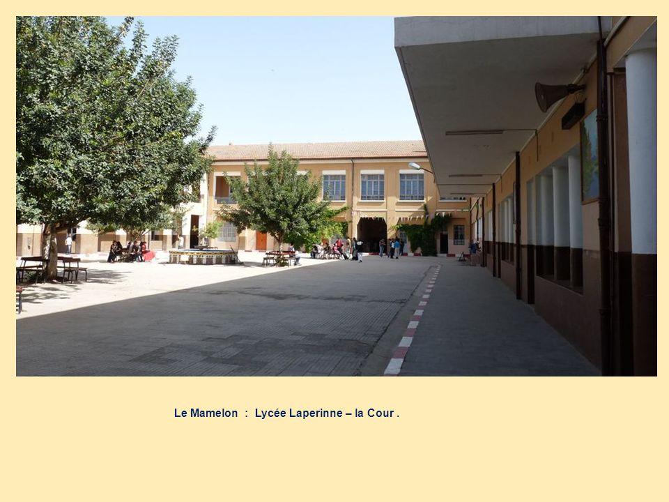 Le Mamelon : Lycée Laperinne – la Cour .