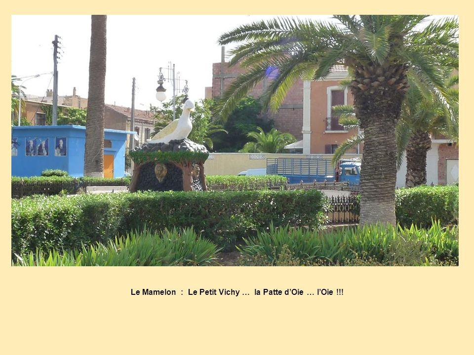 Le Mamelon : Le Petit Vichy … la Patte d'Oie … l'Oie !!!