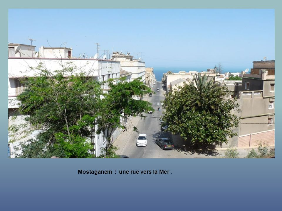 Mostaganem : une rue vers la Mer .