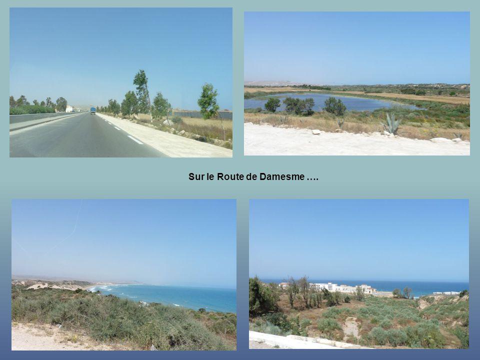 Sur le Route de Damesme ….