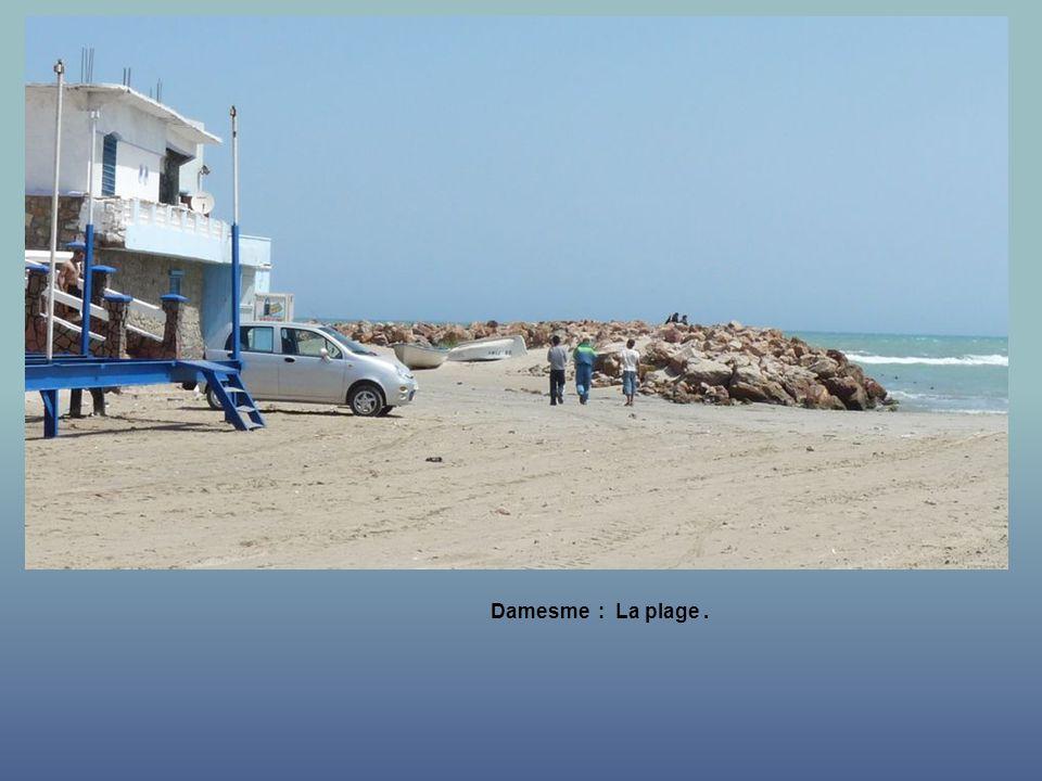 Damesme : La plage .