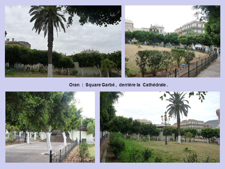 Oran : Square Garbé , derrière la Cathédrale .