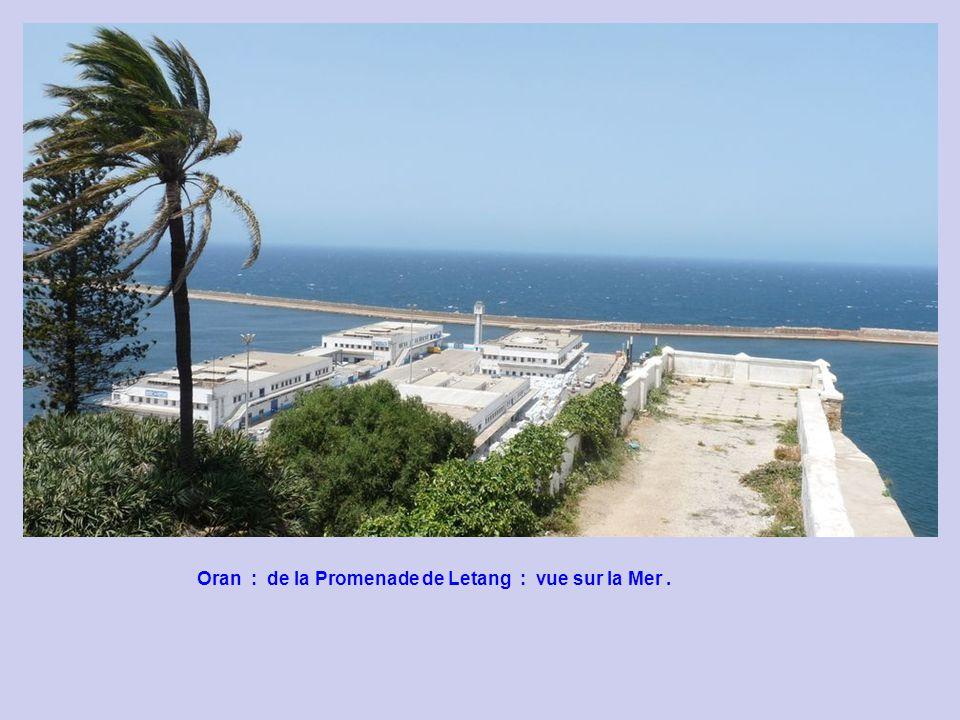Oran : de la Promenade de Letang : vue sur la Mer .