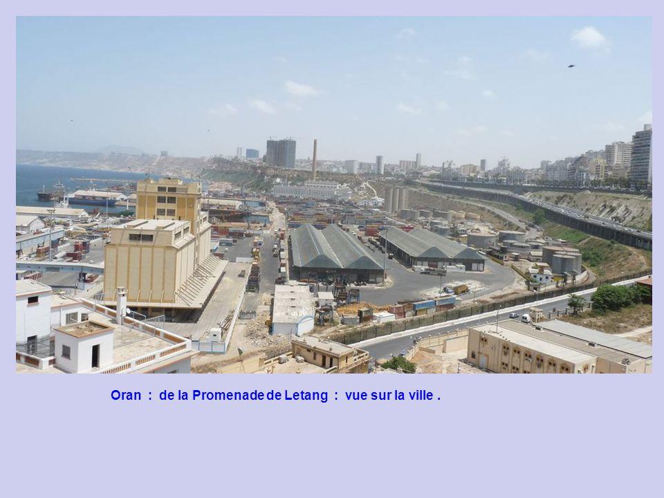 Oran : de la Promenade de Letang : vue sur la ville .