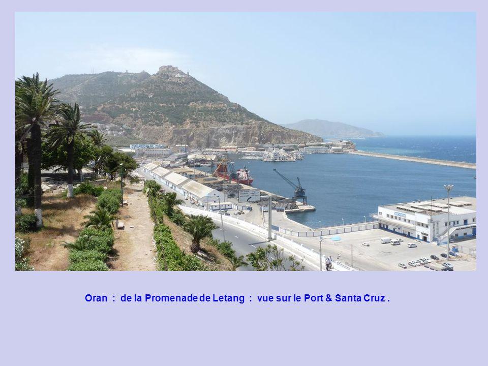 Oran : de la Promenade de Letang : vue sur le Port & Santa Cruz .