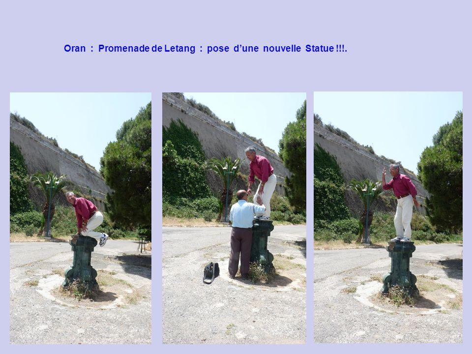 Oran : Promenade de Letang : pose d'une nouvelle Statue !!!.