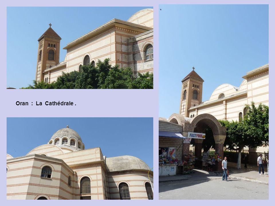 Oran : La Cathédrale .