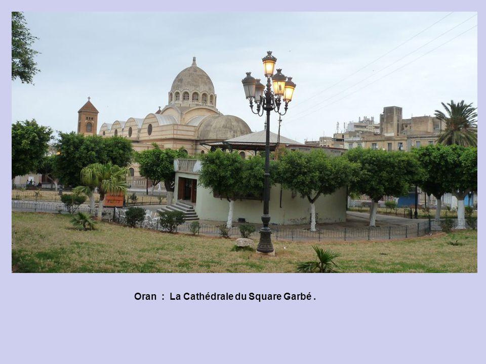 Oran : La Cathédrale du Square Garbé .