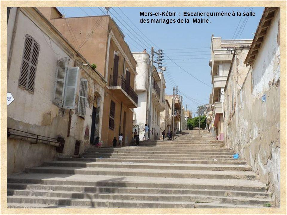 Mers-el-Kébir : Escalier qui mène à la salle des mariages de la Mairie .