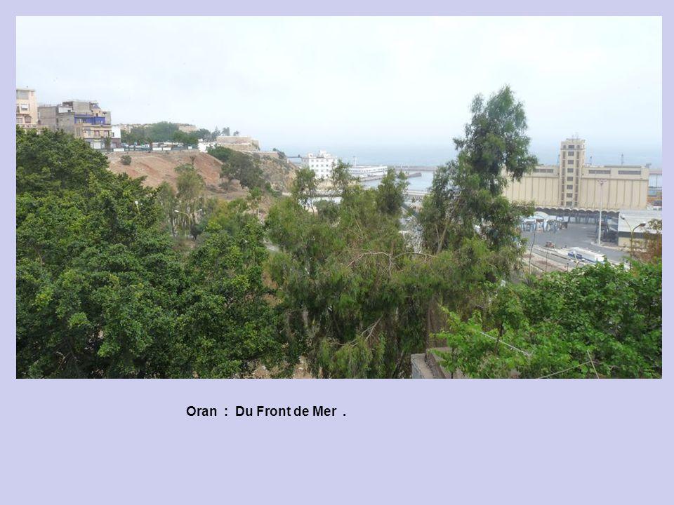 Oran : Du Front de Mer .