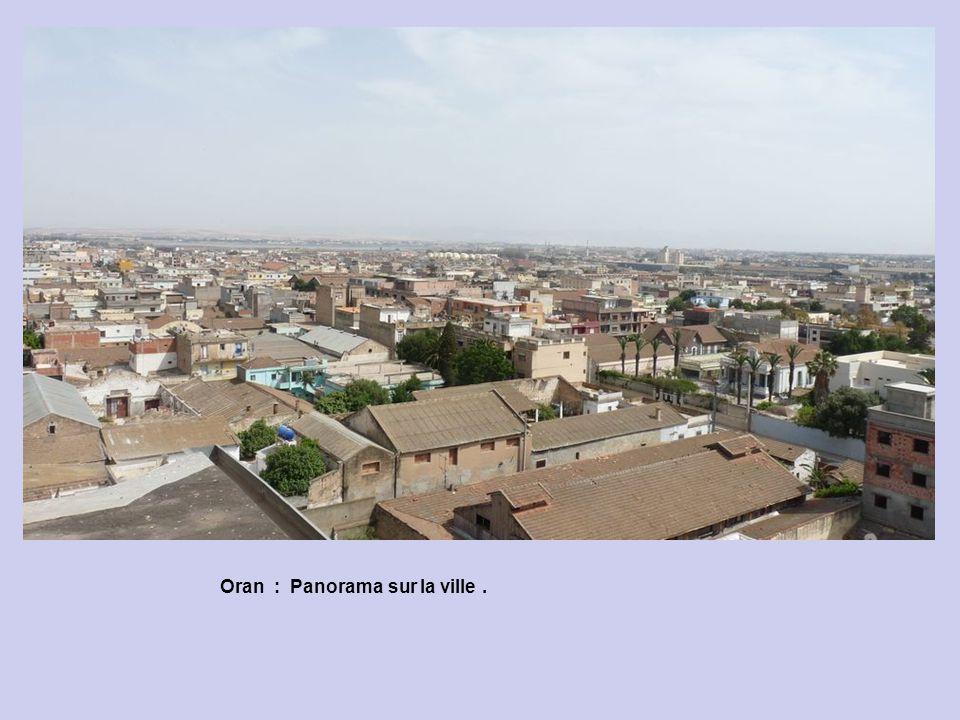 Oran : Panorama sur la ville .