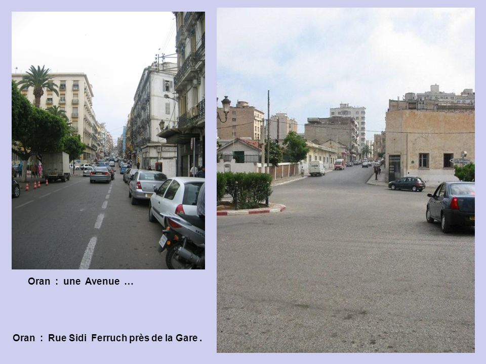 Oran : une Avenue … Oran : Rue Sidi Ferruch près de la Gare .