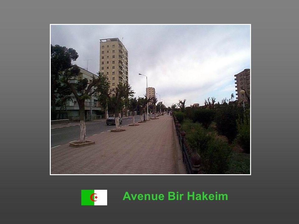 Avenue Bir Hakeim