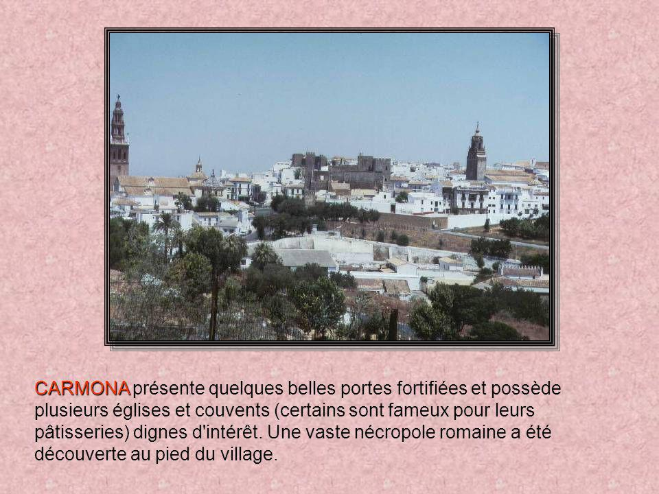 CARMONA présente quelques belles portes fortifiées et possède plusieurs églises et couvents (certains sont fameux pour leurs pâtisseries) dignes d intérêt.