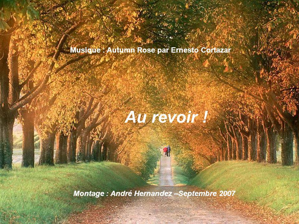 Au revoir ! Musique : Autumn Rose par Ernesto Cortazar