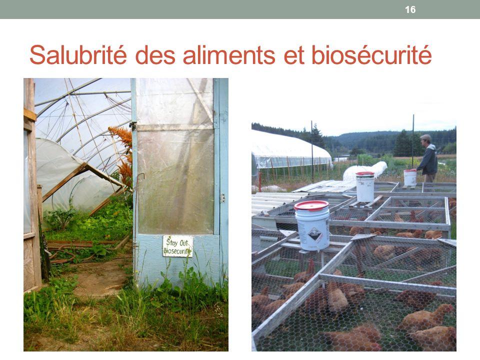 Salubrité des aliments et biosécurité
