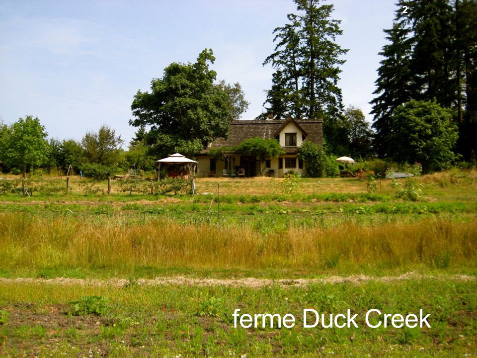 Duck Creek Farm ferme Duck Creek