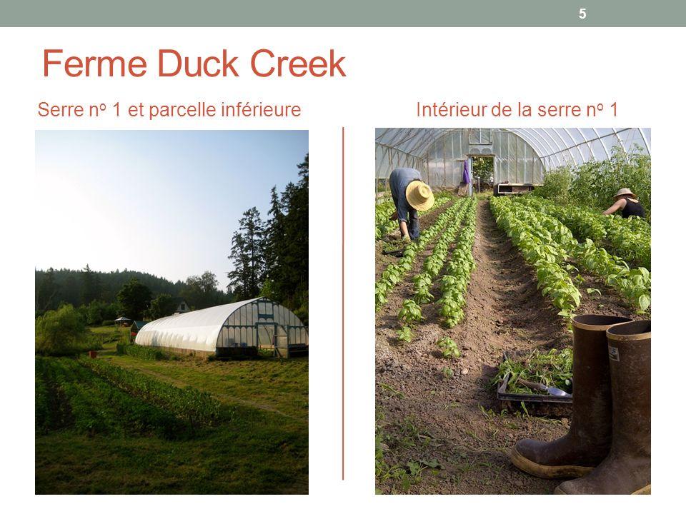 Ferme Duck Creek Serre no 1 et parcelle inférieure