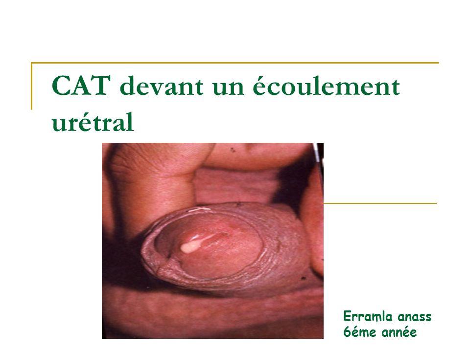 CAT devant un écoulement urétral