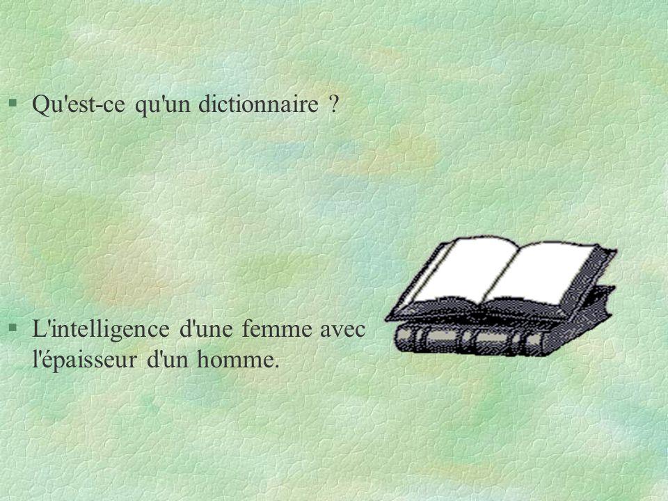 Qu est-ce qu un dictionnaire